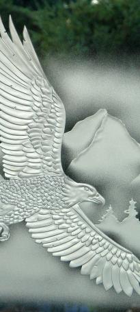 eagle soaring sh 300 rz